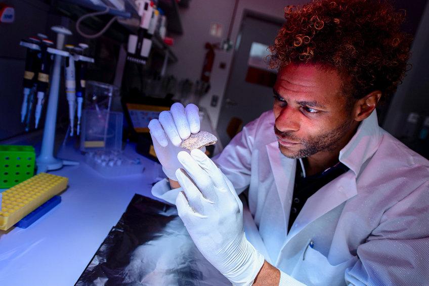 研究人员Diyendo Massilani分析了Salkhit和Tianyuan个体的基因组,并发现了灭绝的人类激素的DNA痕迹。.png