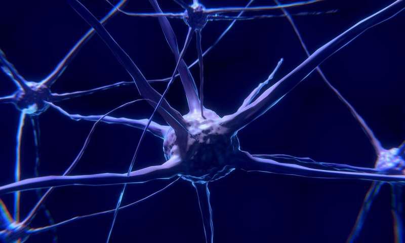 通过编辑神经细胞中的关键基因来发展阿尔茨海默氏病.png
