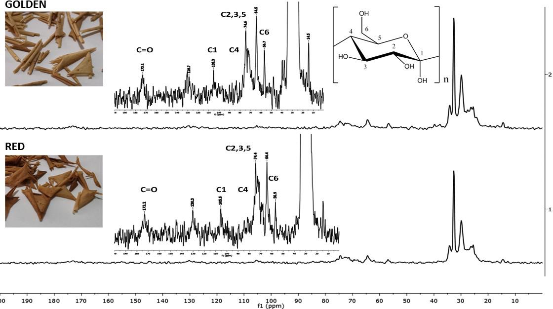 """来自""""金冠""""和""""红冠""""苹果的角质的交叉极化魔角旋转核磁共振(CPMAS 13C NMR)光谱.png"""